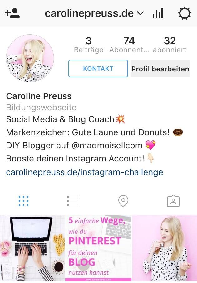 newsletter-erstellen-blogger-instagram-bio